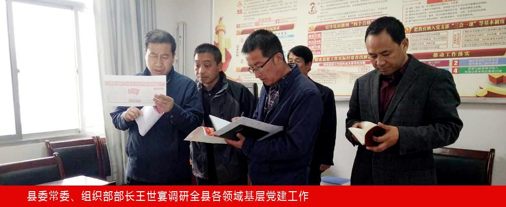 县委常委、组织部部长王世宴调研全县各领域基层党建工作