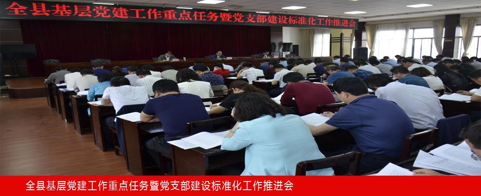渭源县召开基层党建工作重点任务暨党支部建设标准化工作推进会