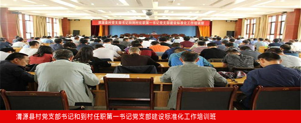 渭源县党支部书记和到村任职第一书记党支部建设标准化工作培训会