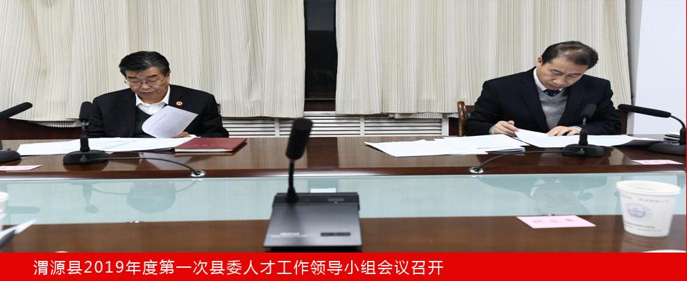 渭源县2019年度第一次县委人才工作领导小组会议召开