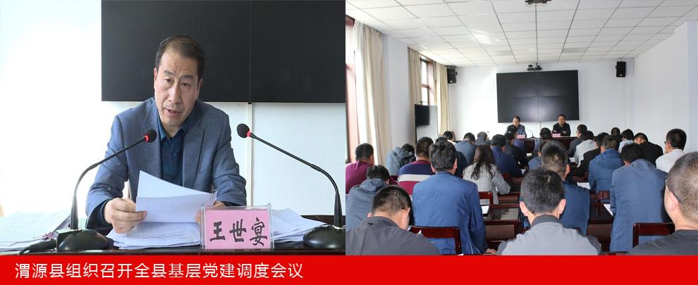 渭源县组织召开全县基层党建调度会议