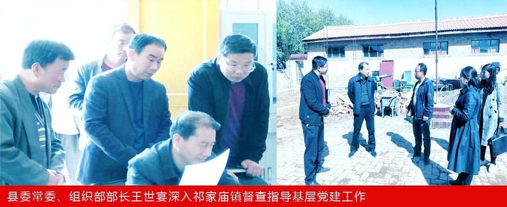 县委常委、组织部部长王世宴深入祁家庙镇督查指导基层党建工作