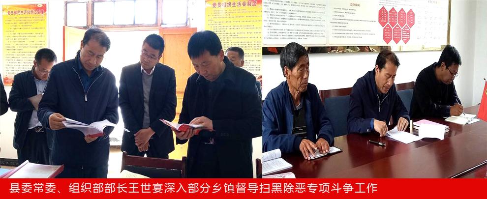县委常委、组织部部长王世宴深入部分乡镇督导扫黑除恶专项斗争工作