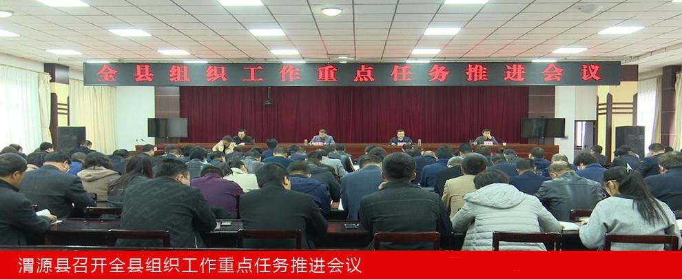 渭源县召开全县组织工作重点任务推进会议